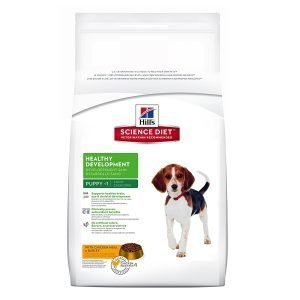 Hill's Science Diet Puppy Food (Dry chicken meal)