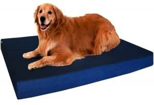 Dogbed4less Orthopedic Memory Foam Dog Bed.
