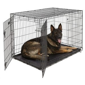 Best Value: MidWest Homes for Pets iCrate Folding Metal Dog Cage