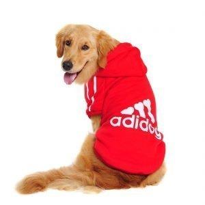 Idepet adidog hoodie