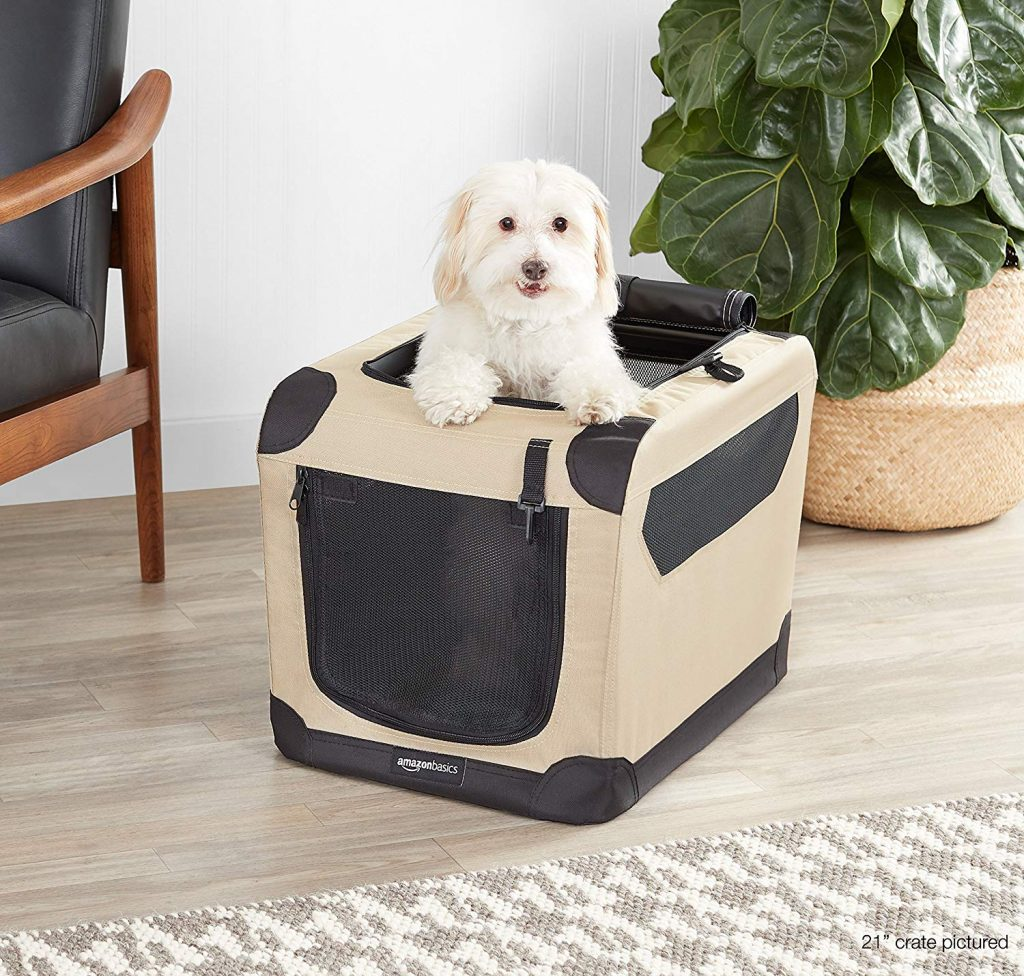 AmazonBasics Folding Soft Dog Crate, with dog standing through top.