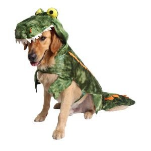 Yinrunx Halloween Alligator Dog Costume.