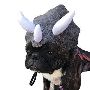 Dinosaur Hat.