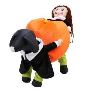 KASQA Funny Pet Carrying Pumpkin Costume.