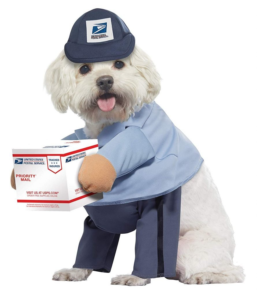 USPS dog costume.