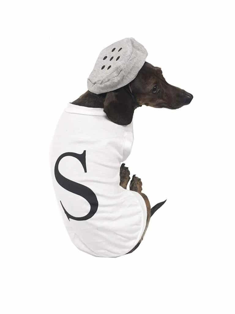 Salt and pepper (salt) dog costume.