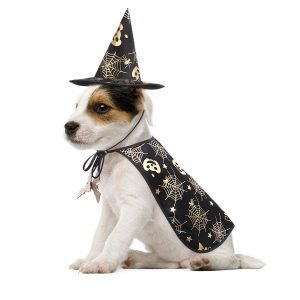 POPETPOP Pet Halloween Costumes Cape with Wizard Hat.