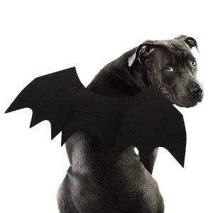 Dog Bat Costume