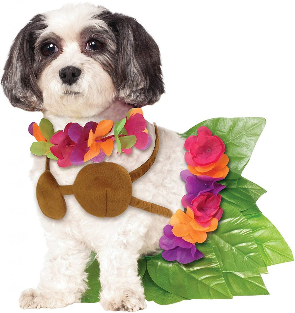 Hula girl dog costume.