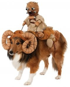 Star Wars Bantha Dog Costume.
