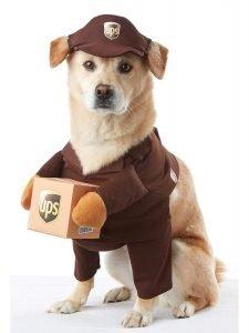 Brown UPS PAL Dog Costume .