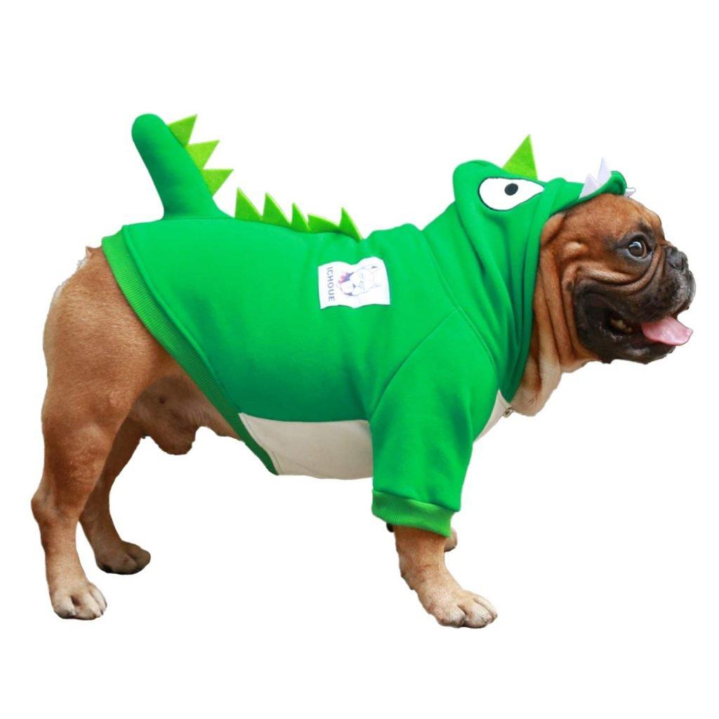 Dog dinosaur costume from iChoue.