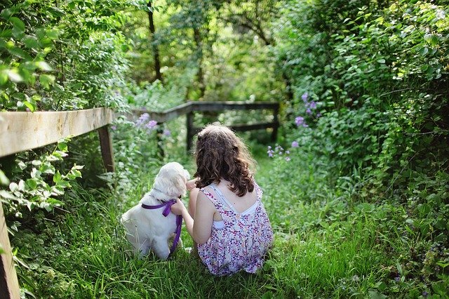 A dog and a little girl siting on the grass.