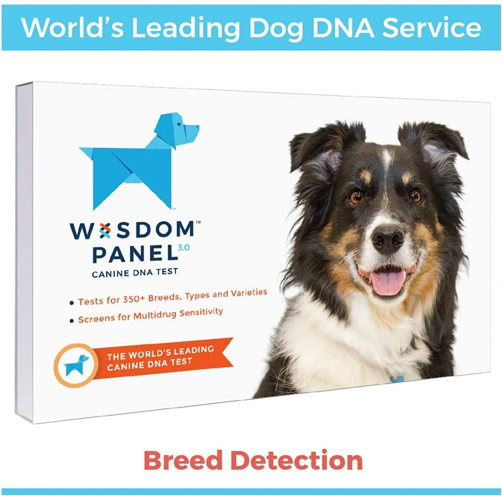 Wisdom Panel Canine DNA Test - breed detection.