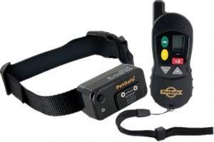 PetSafe Big Dog Remote Trainer.