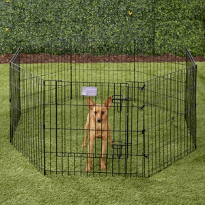 MidWest Wire Dog Exercise Pen.