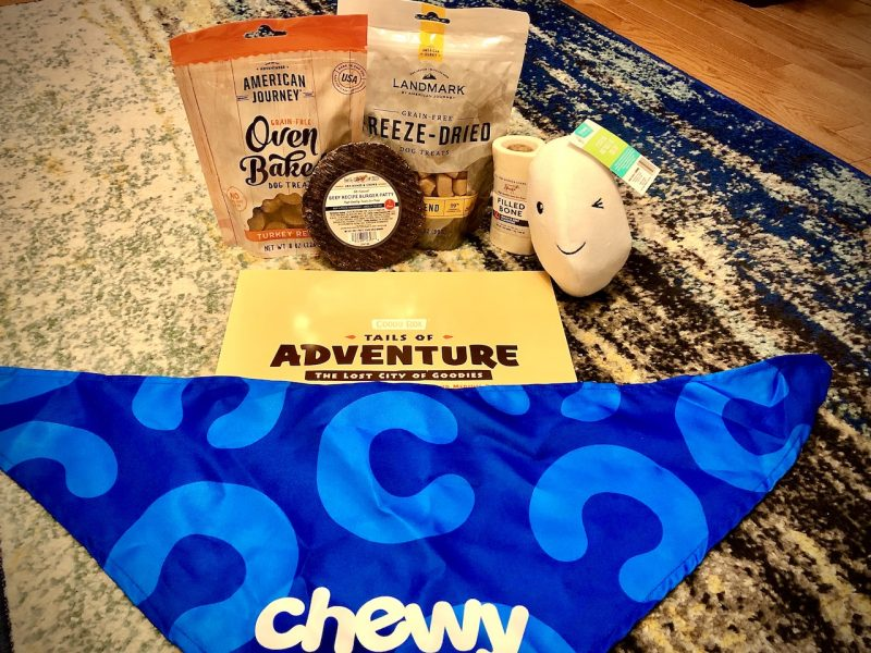 Chewy Adult Dog S/M Goody Box, contents unpacked.