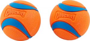 Chuckit! Ultra Rubber Ball Tough Dog Toy.