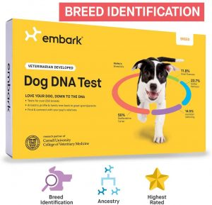 Embark Dog DNA Test Breed Identification Kit.