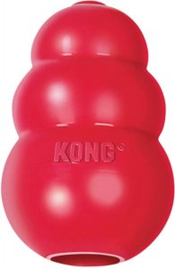 KONG Classic Dog Toy.