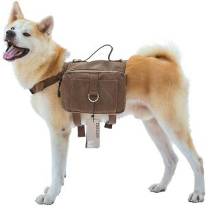 Best backpack for dogs to wear: OneTigris Cotton Canvas.
