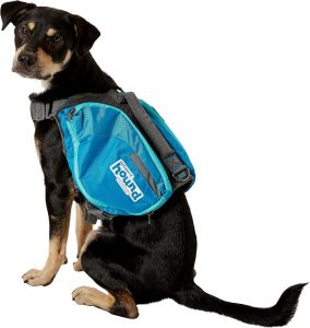 Outward Hound DayPak for Dogs.