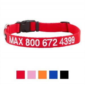 GoTags Personalized Nylon Dog Collar.