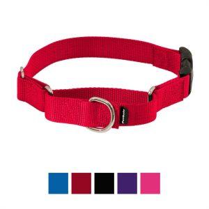 PetSafe Premier Quick Snap Nylon Martingale Dog Collar.