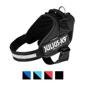 best no-pull dog harness: Julius-K9.