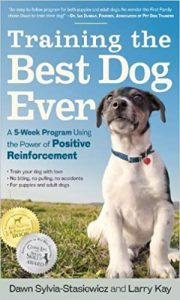 Best Dog Training Book: Training The Best Dog Ever.