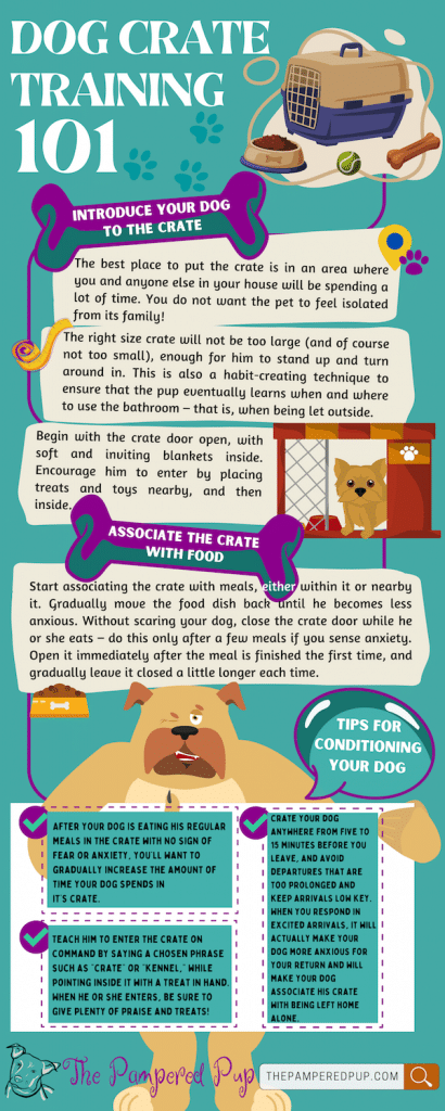 Crate training 101 inforgraphic.