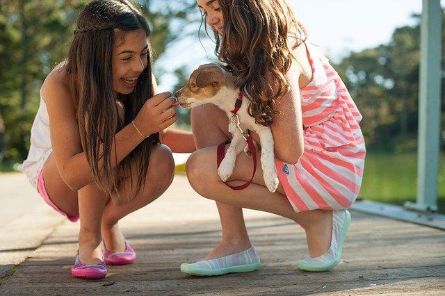 Two girls laughing and holding a puppy.