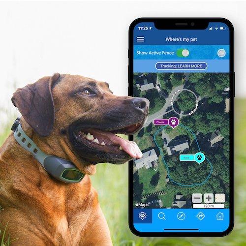 SpotOn GPS Virtual Dog Fence.