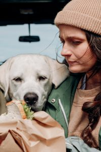 Labrador and woman with sandwich.
