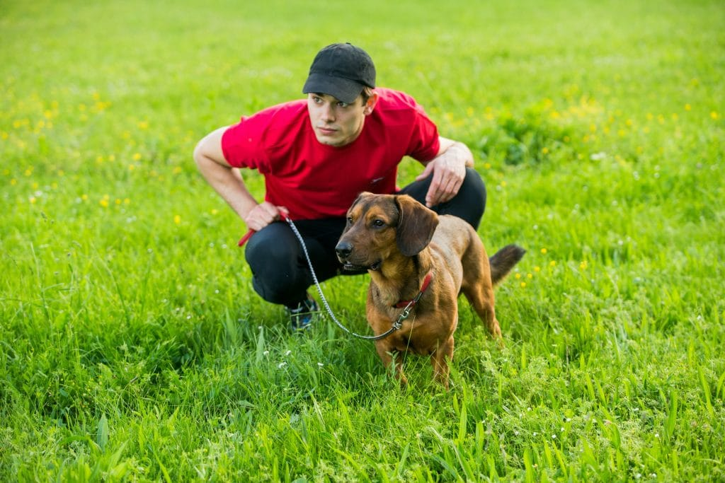 Man and dog on grass.