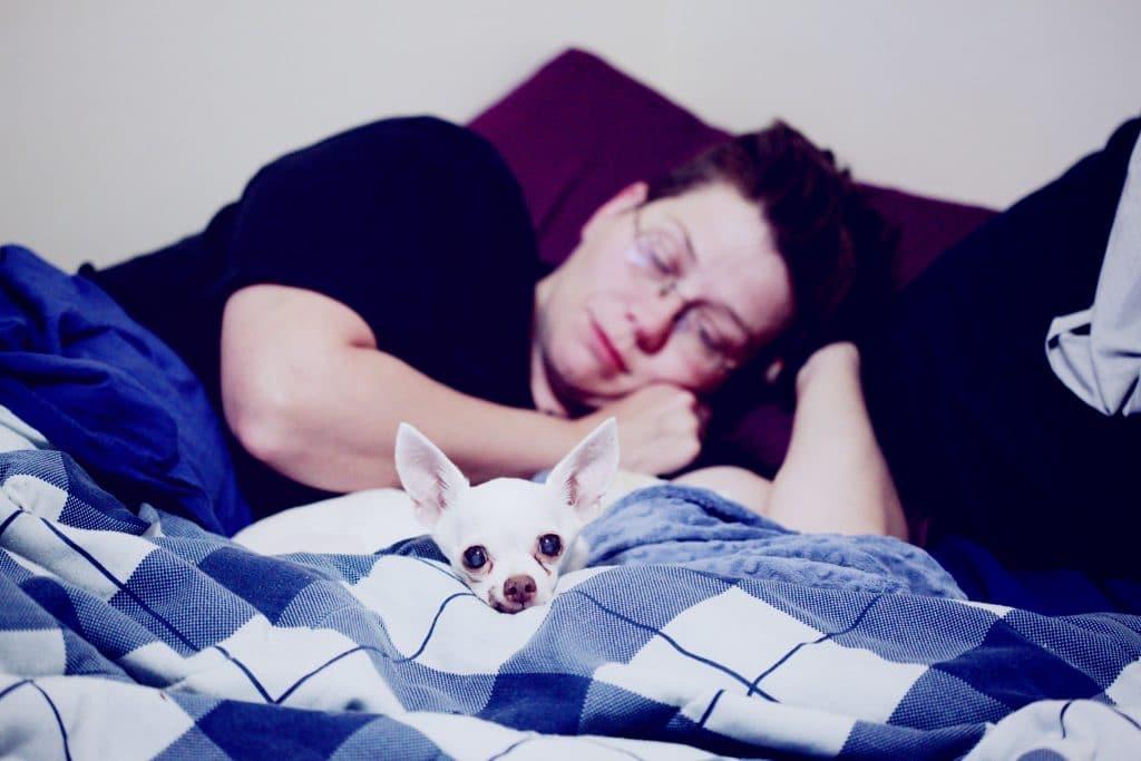 Sleeping beside dog.
