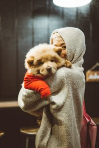 Woman with hoodie and Chow Chow.