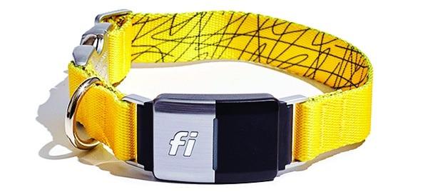 Fi Smart Dog Collar.