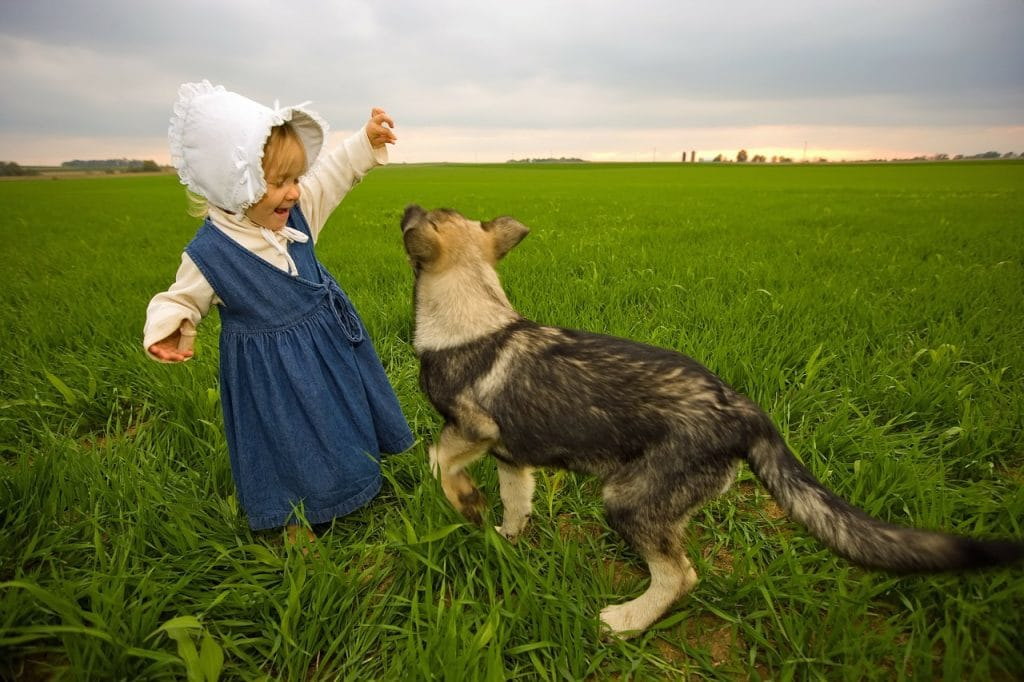 Girl and dog playing on field.