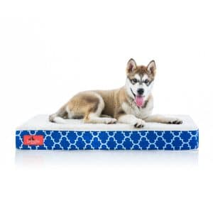 Brindle Waterproof Orthopedic Pillow Cat & Dog Bed w/ Removable Cover.