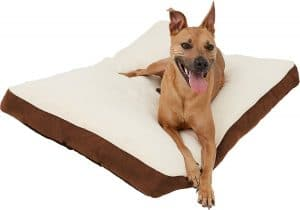 Frisco Pillow Cat and Dog Bed.