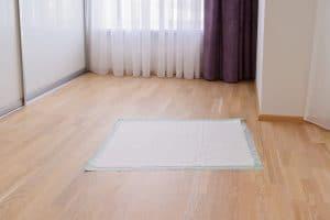 Dog pad on floor.