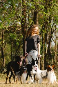 Woman walking a group of dogs.
