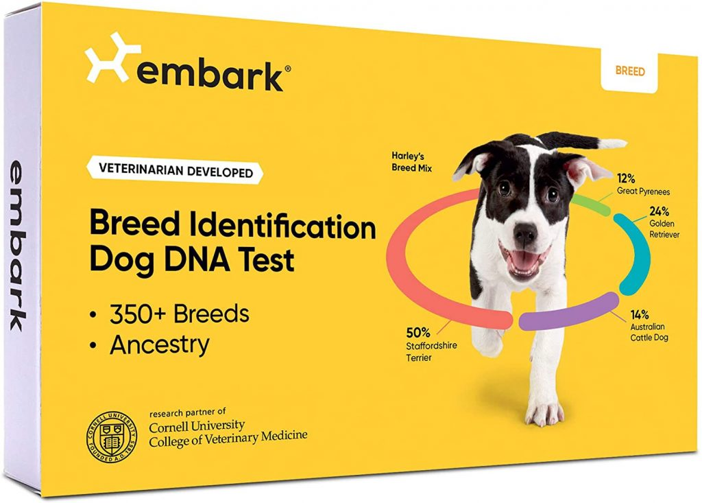 Embark Breed Identification Kit Review.
