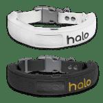 Halo Collar Grey & White