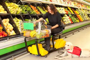 Woman on wheel chair doing grocery with service dog.